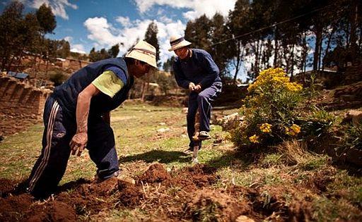 Agricultores.apurimac.pnud.blog