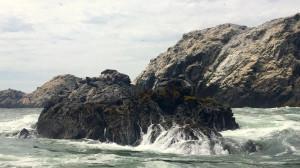 Viaja a Isla Foca, un paraíso por descubrir en Piura | VIDEO