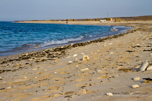 2414_ras_al_hadd_coast