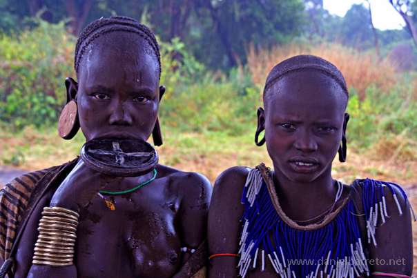 Las mujeres de la tribu Mursi son mundialmente conocidas por cortarse el labio inferior e insertar un plato de barro que va incrementándose en tamaño con la edad y constituye un signo de belleza y prestigio para su tribu. Las chicas de la foto viven junto con los otros miembros de su tribu (aproximadamente 7.500) en el valle del Rio Omo. El Valle del Rio Omo es una de las regiones más variadas del mundo desde un punto de vista antropológico. Una docena de tribus diferentes viven en la zona sur del Valle del Río Omo cerca de la frontera...