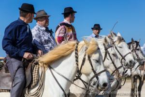 Camarga: tierra de vaqueros, toros y caballos