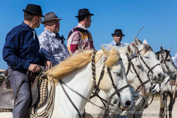 En Francia, el lejano oeste está situado en el extremo sur. Allá donde el caudaloso río Ródano se junta con el mar Mediterraneo se encuentra la región natural de Camarga compuesta de extensas llanuras salpicadas de lagunas y humedales y albergando una variada población de aves. La Camarga es también hogar de ricas tradiciones ganaderas. En sus llanuras los Guardianes (una versión francesa de vaqueros) crian desde hace siglos de forma extensiva caballos de pelaje blanco y toros y participan en diversas tradiciones como las...