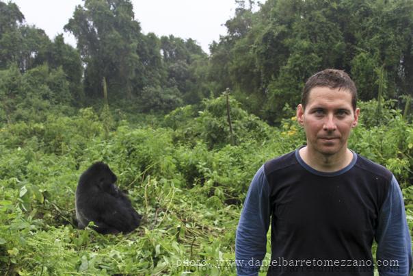 0490_gorillas_moi