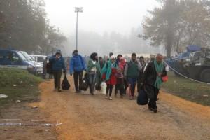 Slovenia: People on transit urgently need assistance