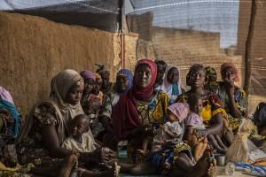 PPCSI in Tama, Niger