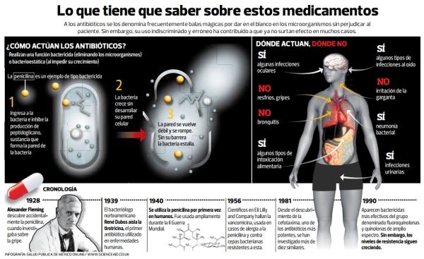 INFOGRAFÍA - Super Bacteria CHICA