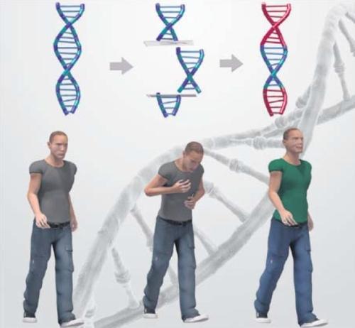 Increíble darse cuenta como pasa el tiempo. En abril del 2015 describimos en esta columna la primera modificación del genoma humano por científicos chinos y en el párrafo final, dijimos que –a pesar de que ese experimento fue en realidad una falla - se abrían las puertas para que en el futuro se pueda erradicar una enfermedad genéticamente determinada. Ese futuro ha llegado, la semana pasada se anunció que se ha eliminado exitosamente del genoma humano, el gen de una grave enfermedad cardiaca.