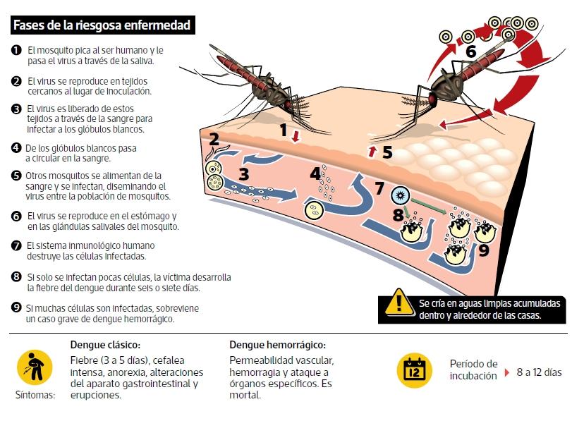 Siendo el Perú uno de los 19 países que han aprobado la vacuna contra el dengue, es propicio revisar el reciente fiasco ocurrido en las Filipinas con relación a esta importante, pero controversial vacuna.