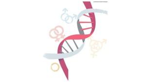 La genética de la persona no heterosexual