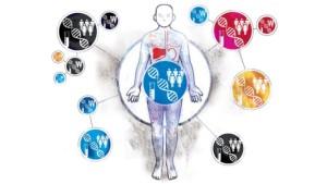 ¿De qué dependen nuestras enfermedades?