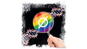 """Se confirma que no existe el """"gen gay"""""""