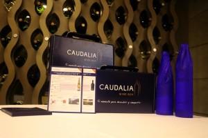 caudalia 2
