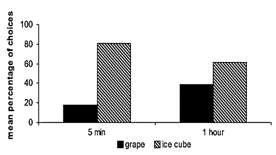 Fuente: Martin-Ordas, et al. Anim Cogn (2010) 13:331–340