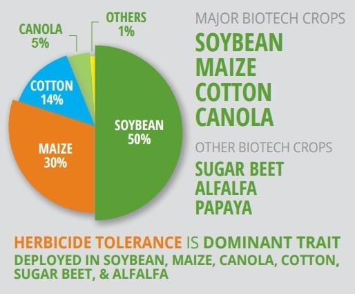 ISAAA gmo crops 2014