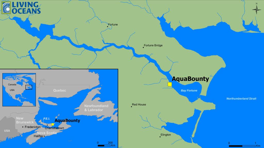 Ubicación de la instalación donde se producen los huevos de salmón transgénicos que son enviados a Panamá para su crianza. Fuente: