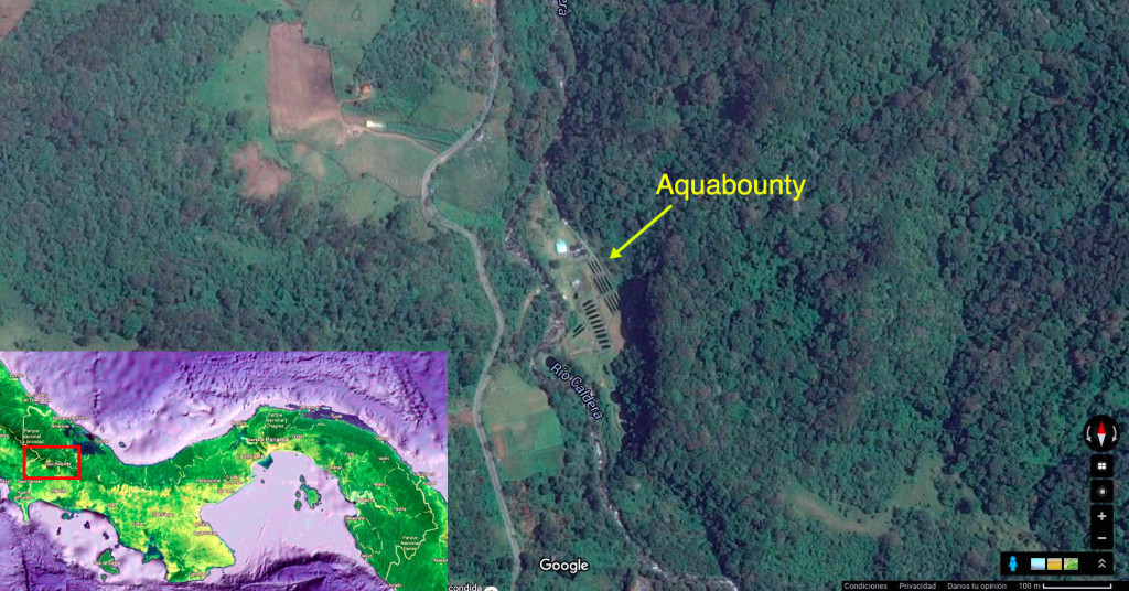 Instalaciones de Aquabounty en las montañas de Panamá.
