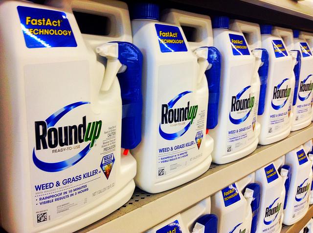 El glifosato es el principal compoennte del herbicida RoundUp. Fuente: Flickr.
