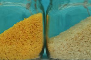 ¿Hay diferencias en la composición de un producto transgénico y uno convencional?