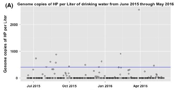 Niveles de H. pylori en las muestras de agua analizadas. Fuente: