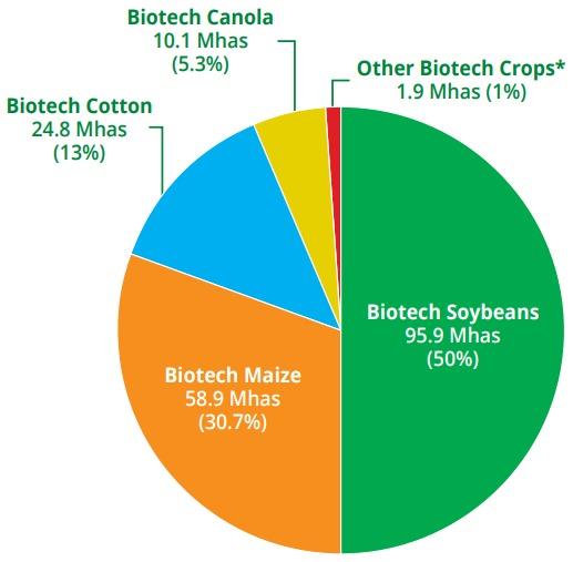 Porcentaje del área sembrada por cada cultivo transgénico. Fuente: ISAAA.