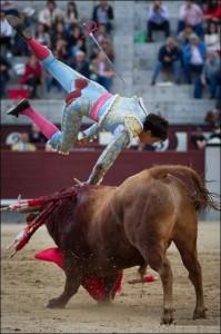 FOTO: PÁG WEB PLAZA DE TOROS DE LAS VENTAS VOLTERETA. Al torearlo por naturales, sufrió una fuerte voltereta.