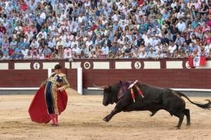 San Isidro ofreció arte y milagros en Madrid (con videos de las faenas de Roca Rey y las mejores de la semana)