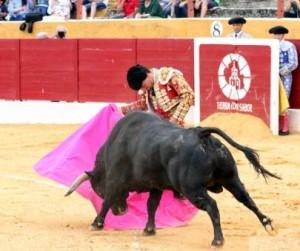 Andrés Roca Rey y Joaquín Galdós triunfaron en otras plazas, antes de ir a Madrid (con videos de sus faenas)