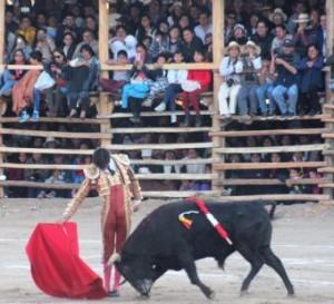 FOTO: JUAN MEDRANO CHAVARRÍA Los shilicos, apiñados en los palcos, disfrutaron con Roca Rey.