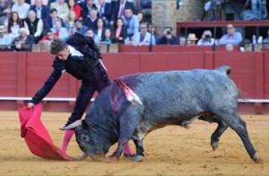 FOTOS: CULTORO Cobradiezmos, que metía la cara y araba la arena con el hocico.