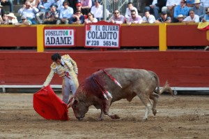 Adame no redondeó con el estoque su buena faena al segundo toro.