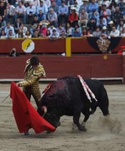 """Sebastián Castella: """"No concibo mi vida sin torear; es una pasión, una necesidad vital"""" (entrevista completa con videos)"""