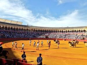 NOTICIAS DEL MUNDO TAURINO: Sevilla (con video)