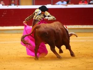 Roca Rey impresionó, el jueves 20, en Logroño y el sábado 22 en Pozoblanco (con videos de sus faenas)