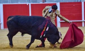 Galdós, el  sábado, con tres  orejas, triunfó en Llerena, Badajoz