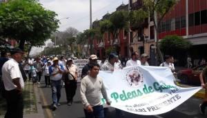 Marchas de taurinos y galleros ante el Tribunal Constitucional del Perú