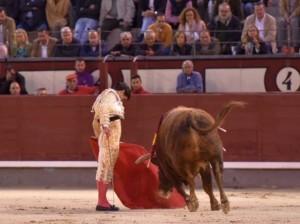 ¿Figura en solitario o pareja de toreros rivales? (con video)