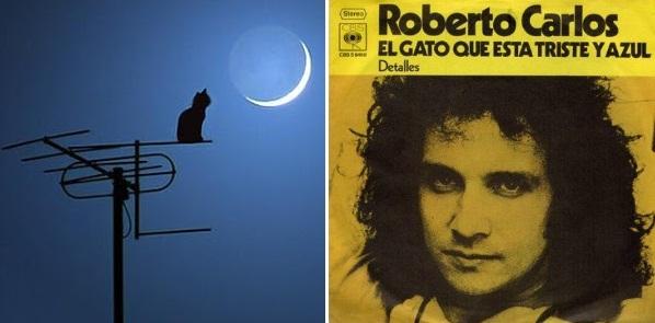 """Un día como hoy, 19 de abril, pero del año 1941, en Cachoeiro de Itapemirim (un municipio del sudeste de Brasil) nació un niño al que apodaron Zunga. Cuando era un chiquillo –como dice una de sus más emblemáticas canciones– soñaba con ser famoso, tal vez cantante, tal vez con un auto convertible. Esta es la historia de un gato """"triste y azul""""."""