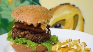 Realizan evento gastronómico para salvar animales