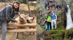 Jardín Vridavan: Año Nuevo con animales, naturaleza y #CelebraSinPirotecnia