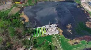 Investigación revela el daño ambiental ocasionado por las granjas industriales en México