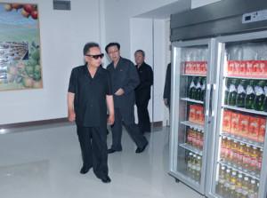 Viendo un refrigerador