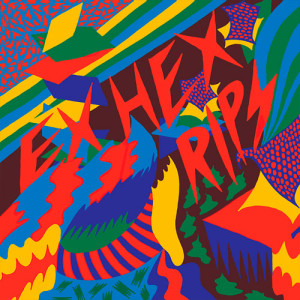 26. Ex Hex – Rips