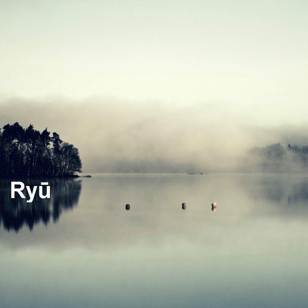 ryu-transition2
