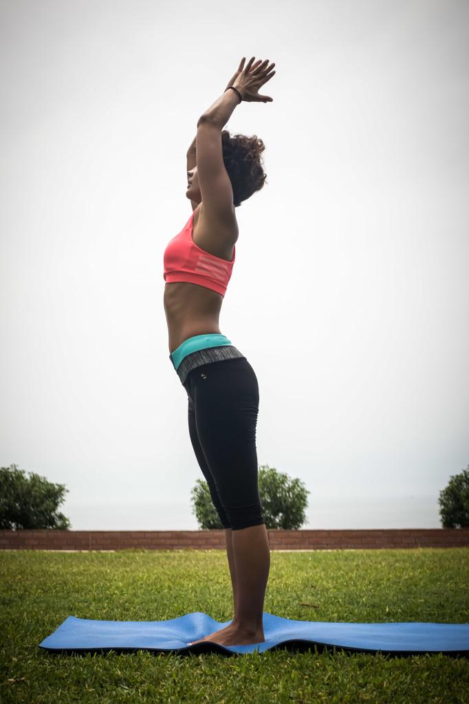 yoga l'hay les roses