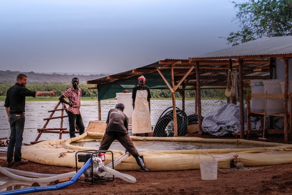 ¿Cómo se diseña y cómo es una planta potabilizadora de agua?  Planta potabilizadora en Palorinya, Uganda ©Fabio Basone/MSF  La potabilizadora queMédicos Sin Fronteras (MSF)construyó en el campo de refugiados sursudaneses de Palorinya, en Uganda,depura dos millones de litros de agua del Nilo al día. El 80% de sus habitantes dependen completamente de este suministro. En este video te mostramos cómo...