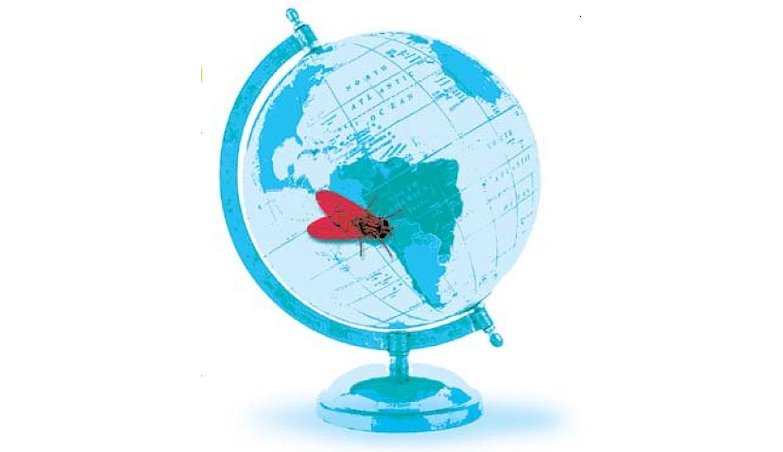 Perú, país insalubre