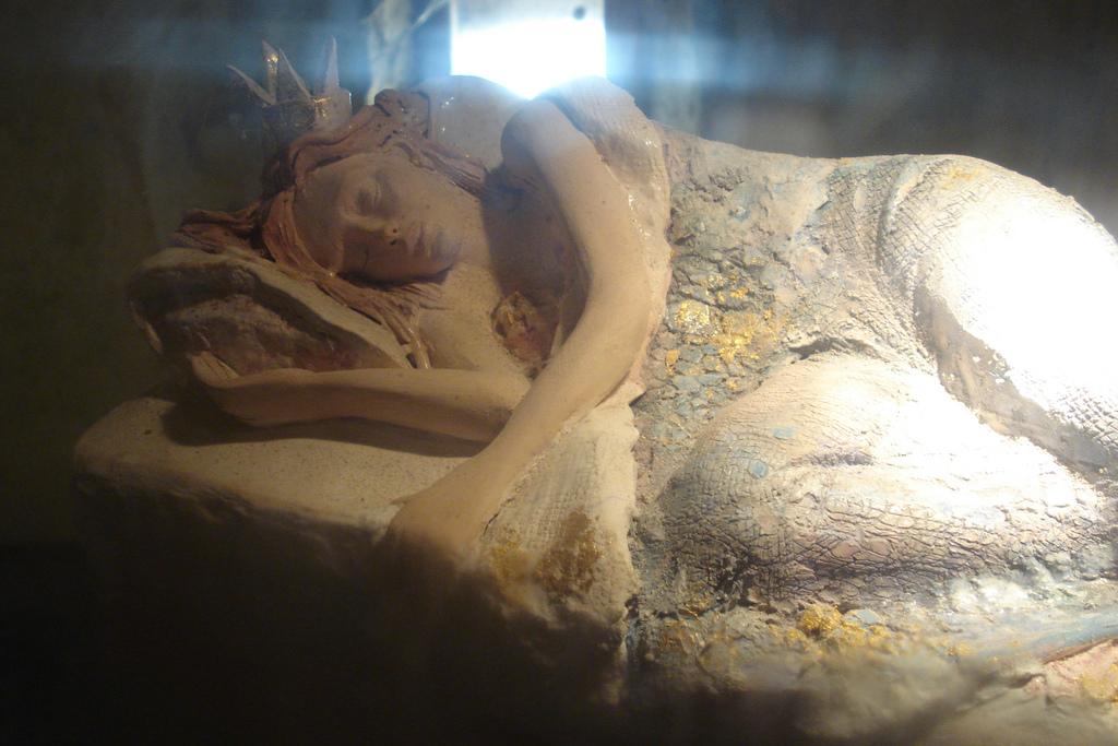 Bella durmiente. Fuente: Flickr.