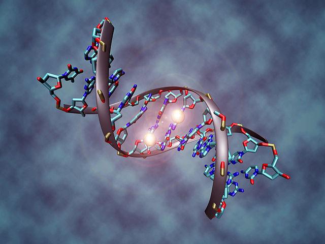 El año de la edición de genes