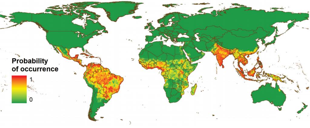 Probabilidad de ocurrencia del dengue en el mundo. Fuente: Bhatt et al. Nature (2013).