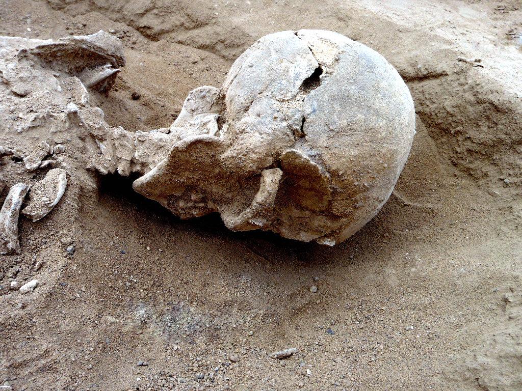 Masacre prehistórica